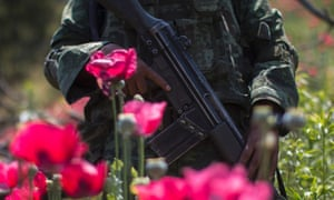 Mexican soldiers take part in an operation to destroy a poppy plantation