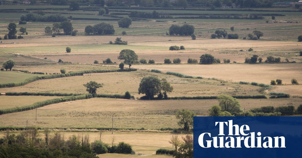 UK farmers allowed to take more water from rivers as heatwave continues