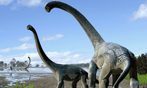 The study showed that while both sides shared a broad interest in science, there was little overlap in the subjects they read, or the books they picked within scientific field. Dinosaurs were universally fascinating, however.