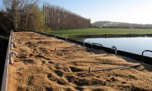 Chile-based BioFiltro has figured out how to use earthworms to clean up wastewater at wineries, dairies and food processing plants. It tailors the mixture of earthworms and bacteria to different types of wastewater and picks earthworms that are best suited for local conditions.
