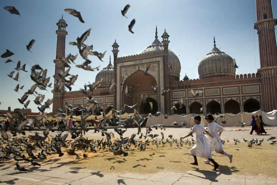 Girls chasing doves in the Jama Masjid the main mosque in Delhi India To accompany a review of the book Dreams of Rivers and Seas, by Tim Parks