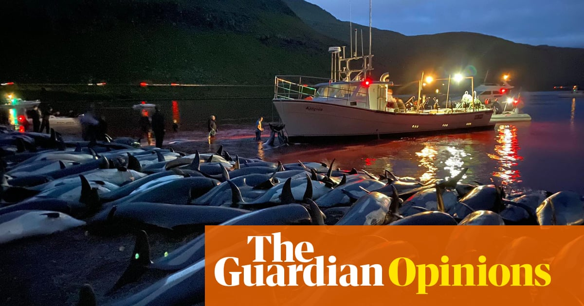 Horror at the Faroes dolphin slaughter is only human – but it risks hypocrisy