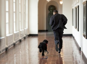 Bo the dog runs down the East Colonnade
