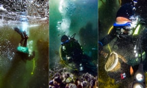 The Poachers And The Treasures Of The Deep Diving For