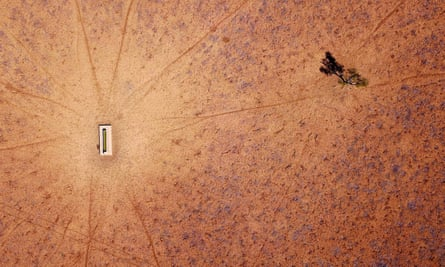 A lone tree stands in a drought-affected paddock in New South Wales, Australia.