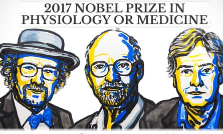 The American scientists Jeffrey C Hall, Michael Rosbash and Michael W Young, who have won this year's prize.