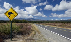 A kiwi sign by a country road