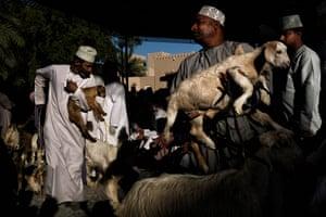 Single Photo Winner Maude Bardet Title: Goat auction in Nizwa