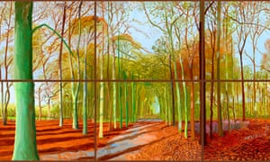 Woldgate Woods from 2006