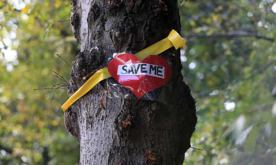 The £2bn tree-felling programme under a PFI contract has met fierce opposition.