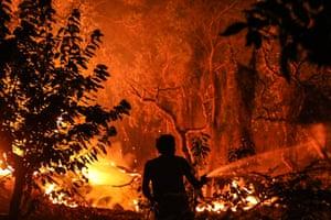 A local tries to put out a forest fire in the Barranco de Banho area of Caldas de Monchique