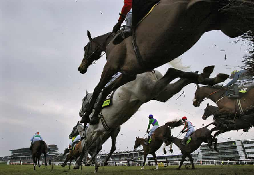 the Gold Cup Steeple Chase at Cheltenham Festival in 2006.