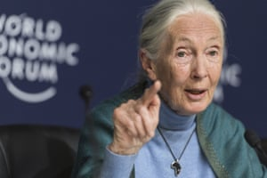 Jane Goodall, the English primatologist and anthropologist, pictured in February.
