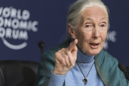 Dr Jane Goodall at the World Economic Forum in Davos, Switzerland, in February.