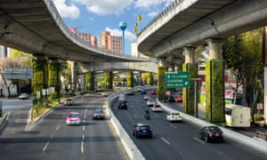 Mexico City's Via Verde scheme has led to the installation of vertical gardens on 1,000 pillars of a busy motorway.