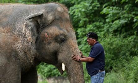 Amir Khalil, head of project development at Four Paws, sedates Kaavan at Marghazar zoo, Islamabad