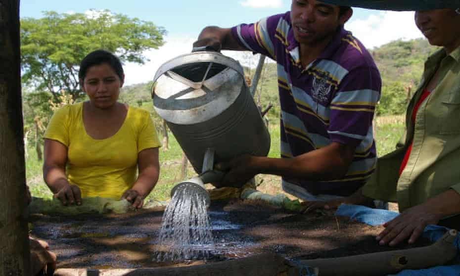 Farmers in Nicaragua