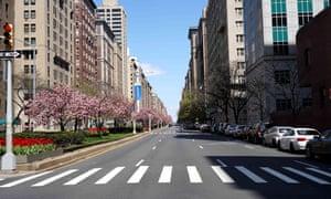 Park Avenue in Manhattan earlier this week.