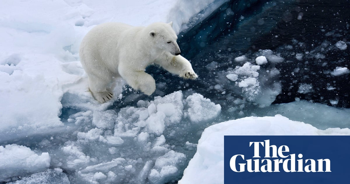 Ice-free Arctic summers now very likely even with climate action