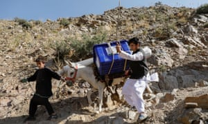 A man tries to control his donkey loaded with ballot boxes and other election material as he transports them to polling stations in Shutul, Panjshir province.
