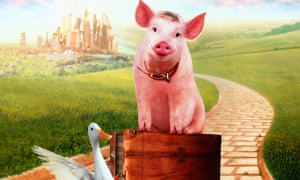 The world's most famous talking pig Babe packs his bags and heads to the city.
