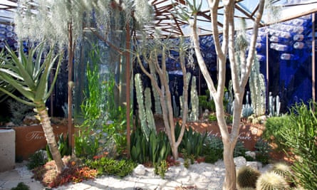 The Pearlfisher garden, by John Warland and the Pearlfisher team, uses succulents and other house plants. It also highlights the problem of plastics in the ocean.
