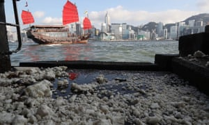 Palm oil gathers around Victoria harbour in Hong Kong.
