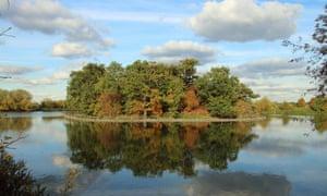 Walthamstow Wetlands on a sunny autumn day.