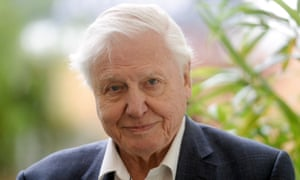 David Attenborough: nature TV is a salve in worrying times ...