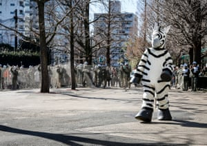 Zookeepers, person in zebra costume