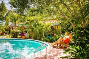 Aruba's wild side | Travel | The Guardian