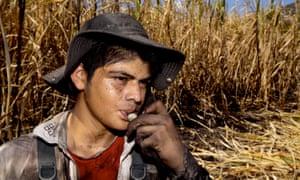 Sugar cane worker in El Salvador