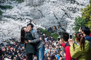 A couple pose in front of blooming cherry blossoms in Wuhan, China