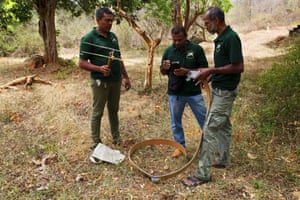 Dr Pruthu Fernando and his colleagues test GPS collars that help monitor herds' movements
