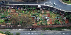 Allotments in Funchal