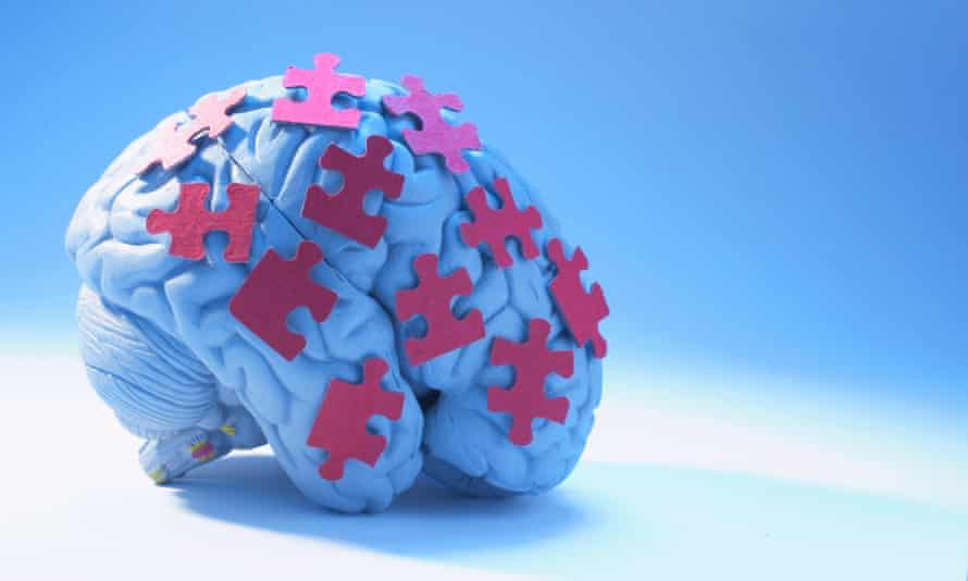 Human Brain and Puzzle Pieces
