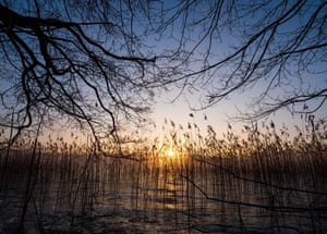 January sunrise in Schorfheide-Chorin biosphere reserve near Joachimsthal, Germany