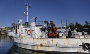 Fifteen men, allegedly part of an Australian criminal syndicate, have been arrested in connection to 500kg of cocaine in NSW and 600kg of cocaine allegedly imported via fishing trawlers through the Sydney Fish Markets.