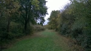 Harry's Park Wood.