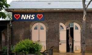An illuminated sign in support of the NHS is seen in the giraffe house at London Zoo.