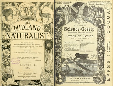 Frontispieces for the Midland Naturalist, 1878, and Science-Gossip, 1892.
