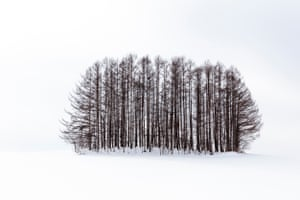 Winter landscapes of Biei, Japan Overall winner Anthony Lawrence captured his landscape-winning portfolio during winter in Biei, Japan.