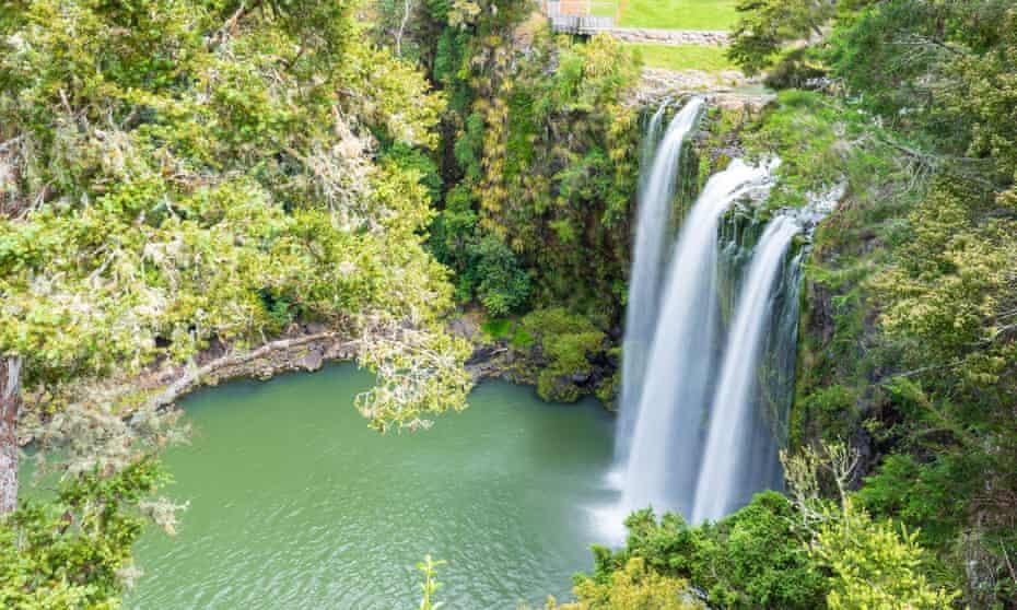 Scenic reserve surrounding the famous Whangerei waterfall