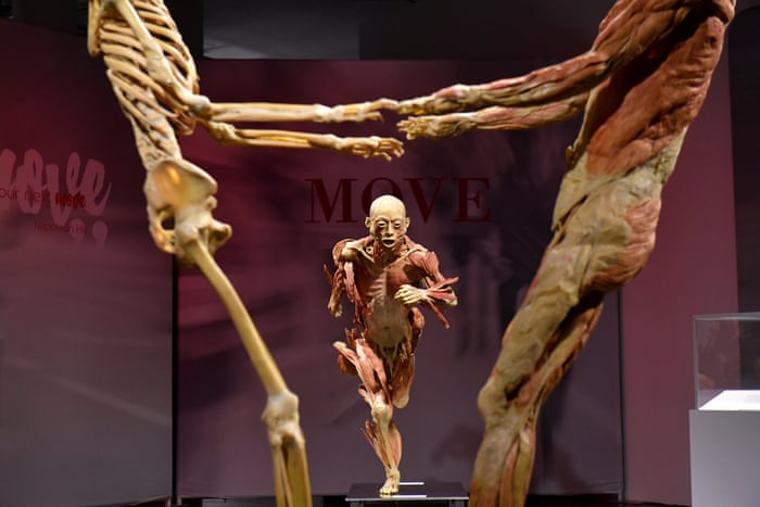 Call To Shut Real Bodies Exhibition Over Fears It Uses Executed