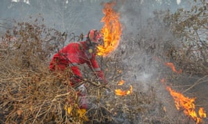 Fire fighters try to extinguish fire at a peatland in Kampar, Riau province, Indonesia.