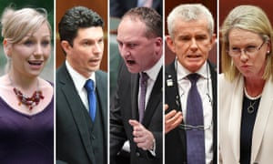 Australian politicians who have been deemed ineligible to serve due to their citizenship. Larissa Waters, Scott Ludlam, Barnaby Joyce, Malcolm Roberts, Fiona Nash.