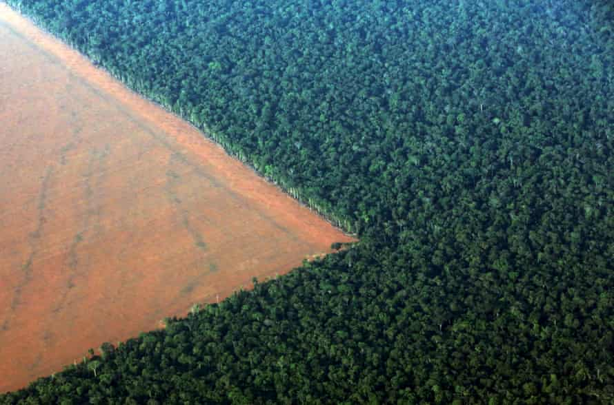 This aerial shot shows Amazon rain forest, bordered by deforested land prepared for planting soybeans in Mato Grosso, western Brazil