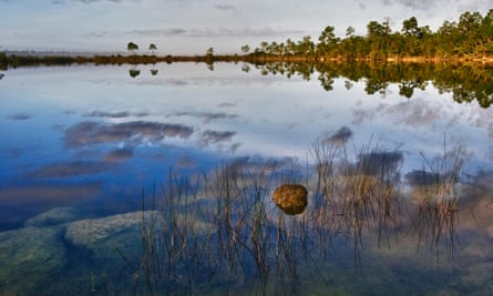 Trump has little to point to in terms of environmental achievements, but he could mention funds to restore the Florida Everglades.