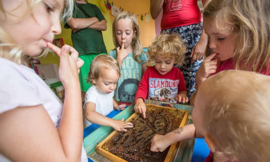 Children taste honey directly form the honeycomb in the api kindergarten Lunba in Ljubljana, Slovenia, on August 29, 2017.