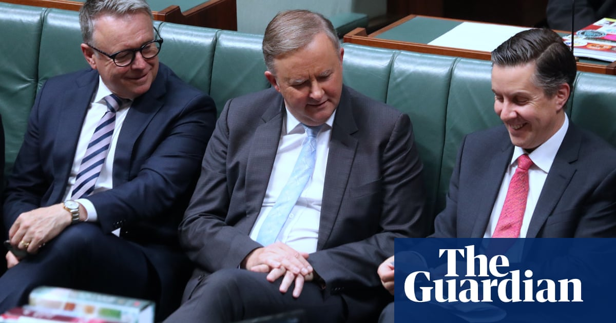 Labor fights to preserve unity as Joel Fitzgibbon calls for Mark Butler to be moved from climate portfolio – The Guardian